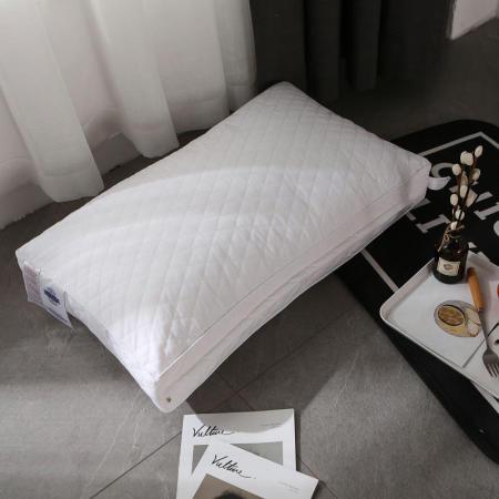 一梦全棉绗绣弹簧枕芯一只装