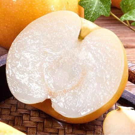 山东莱阳爆汁蜜梨大果5斤