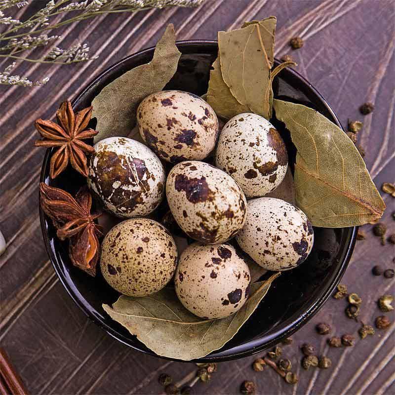 新鲜生鹌鹑蛋200枚现收现发