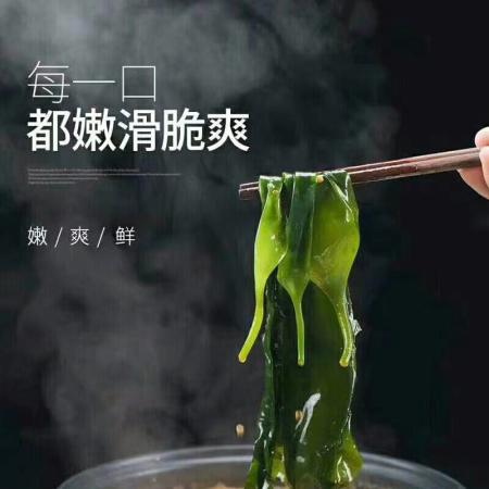 艮巴 福建霞浦海带苗 无沙无泥 鲜嫩爽口 500g/包 2包装·绿色