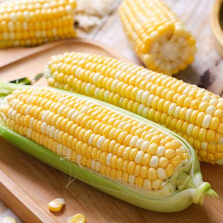 云南爆浆水果玉米净重8斤装 (约9-13根)  共同