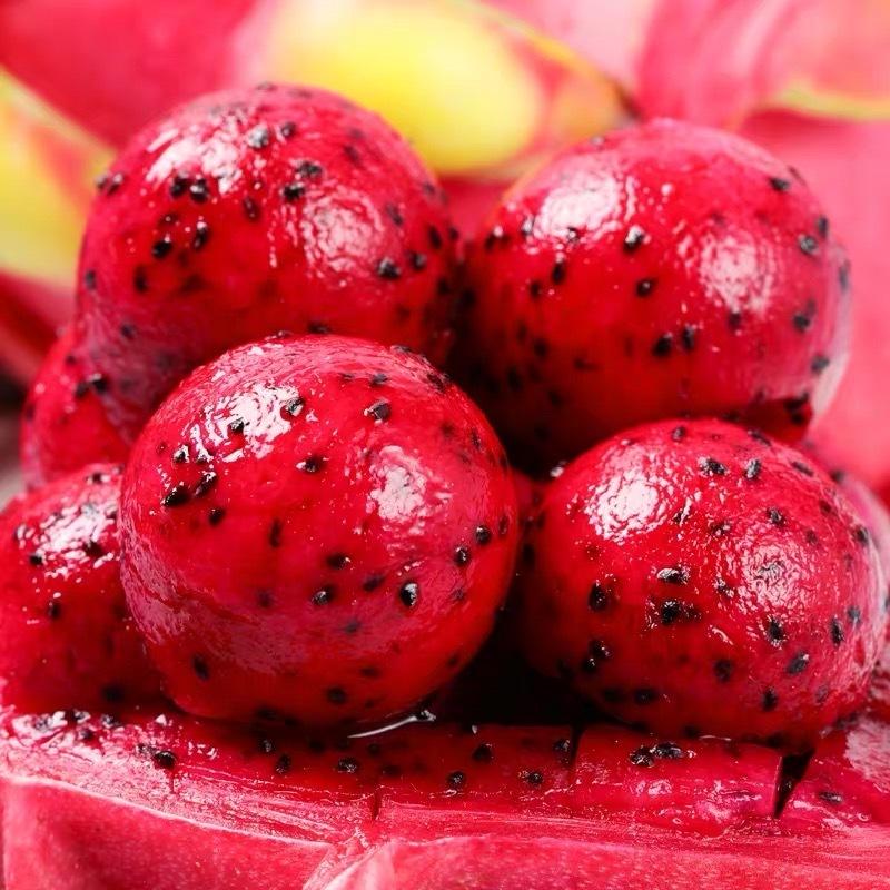 海南金都一号红心火龙果4-6粒(4.5-5斤)