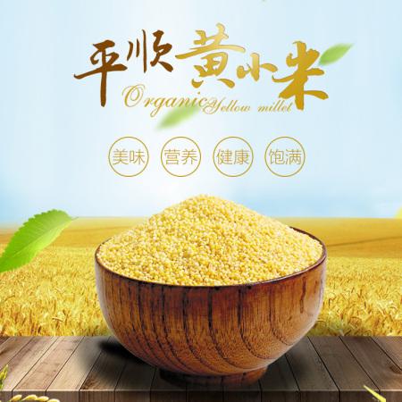 黄小米5斤装/袋