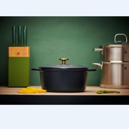 双立人珐琅铸铁锅