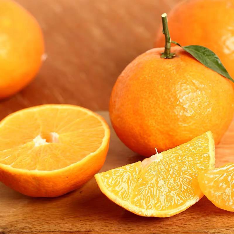 爱媛38号果冻橙8斤