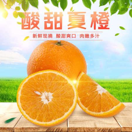 秭归夏橙 净重9斤,新鲜现摘,橙味浓郁多汁