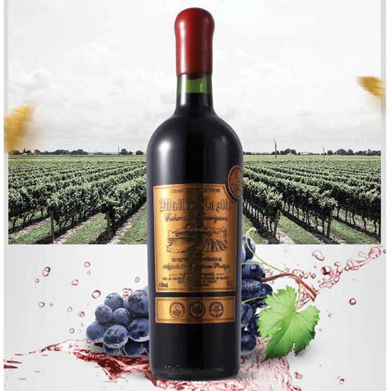 法国进口莎隆谷庄主酿红酒