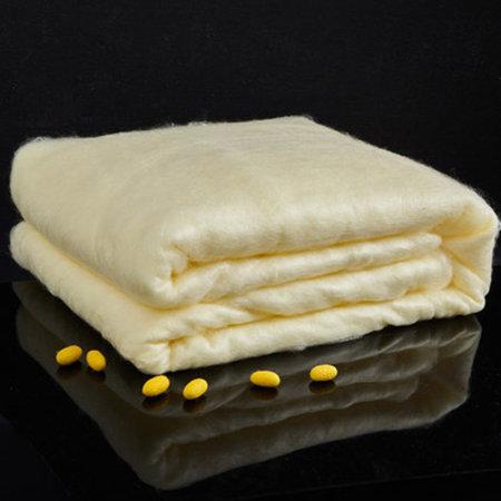 一梦黄金蚕丝纱布纯棉被芯