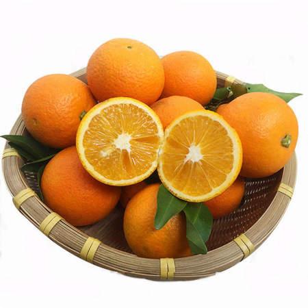 广西纯甜蜜香橙蜂蜜橙净重8斤大果