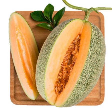 西州蜜网纹蜜瓜7-8斤2颗装,果香怡人,鲜甜爽口,水润多汁
